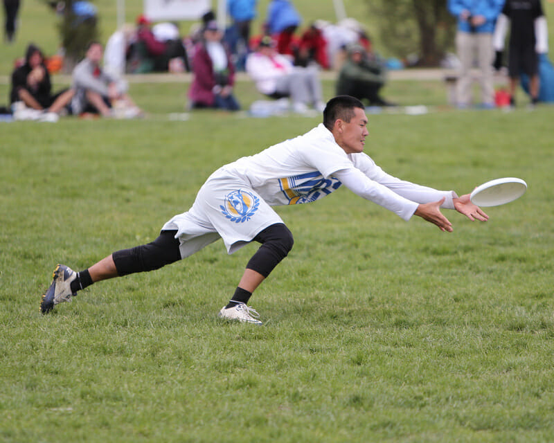 A Davis player gets down for the disc at the 2013 College Championships.