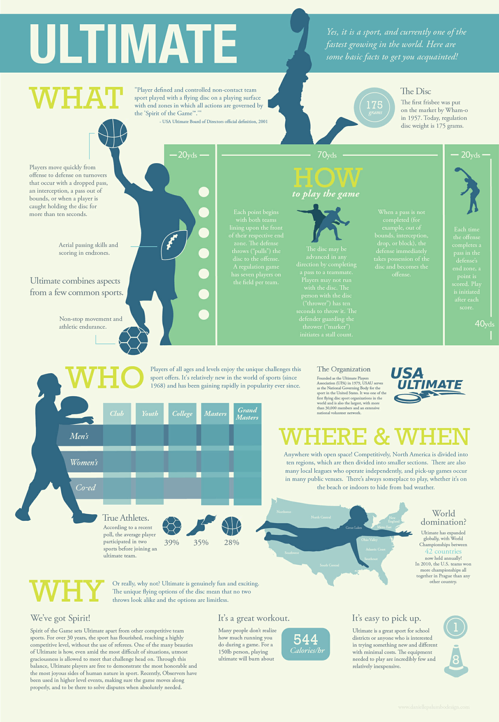 Infographic about Ultimate by Danielle Palumbo.
