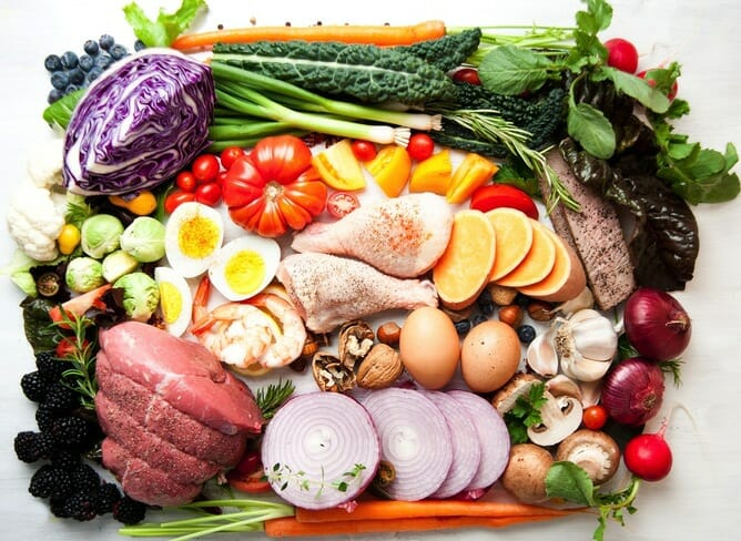 A Popular Diet Review: Keys To Optimal Sports Nutrition